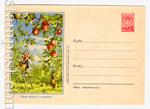 ХМК СССР 1955 г. 156  1955 05.10 Сбор яблок в колхозе