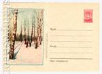 ХМК СССР 1956 г. 337  1956 16.11 Лыжники в лесу