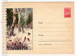 ХМК СССР 1958 г. 840  1958 29.12 Снегири в зимнем лесу