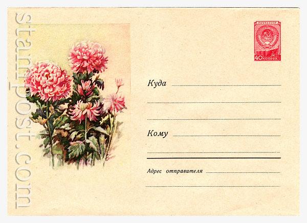 676 Dx3 ХМК СССР  1958 12.04 Хризантемы
