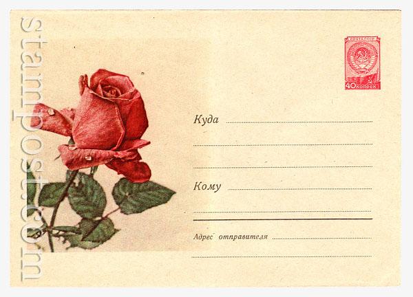 677 Dx3 ХМК СССР  1958 17.04 Роза