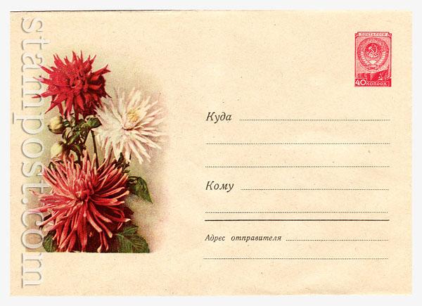 681 Dx3 ХМК СССР  1958 17.04 Георгины