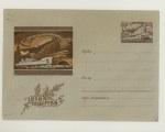ХМК СССР 1958 г. 867 b  1958 Почтовый транспорт. в/з-4 (волна) СК №870а (58-270-А)