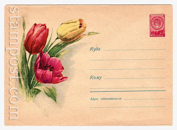 926 Dx2 ХМК СССР СССР 1959 11.03 Тюльпаны