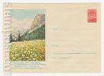 ХМК СССР 1959 г. 876  1959 03.01 Тянь-Шань. Один из альпийских лугов