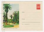 ХМК СССР 1959 г. 935  1959 16.03 Гагра. Курортный парк