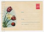 ХМК СССР 1959 г. 1030  1959 01.08 Тюльпаны
