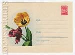 ХМК СССР 1959 г. 1042  1959 28.08 Тюльпаны