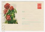 ХМК СССР 1959 г. 1077  1959 14.11 Пионы