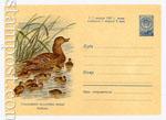 ХМК СССР 1960 г. 1227  1960 03.06 Кряква. Охраняйте полезных птиц!