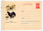 USSR Art Covers 1960 1324 Dx2 USSR 1960 21.09 Black Grouse. Protect valuable birds. Sold