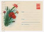 ХМК СССР 1960 г. 1161  1960 05.04 Гвоздики