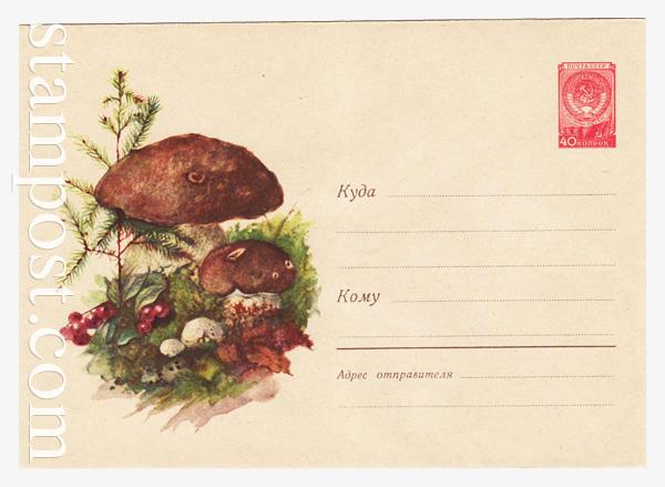 1248 ХМК СССР  1960 27.06 Белые грибы