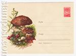 ХМК СССР 1960 г. 1248  1960 27.06 Белые грибы