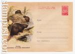 USSR Art Covers/1960 1286a  1960 03.08 Бобры. Охраняйте полезных животных! Конверт надорван сверху