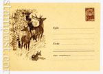 ХМК СССР 1962 г. 2277 Dx2  1962 29.11 Благородный олень
