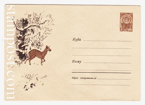 2236 ХМК СССР  1962 25.10 Кабарга