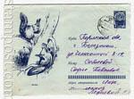 USSR Art Covers 1963 2669  1963 15.07 Белки