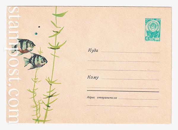2580 ХМК СССР  11.06.10963 Аквариумные рыбки