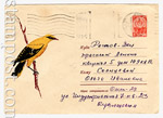 USSR Art Covers 1964 3126 USSR 1964 16.04 Oriole.Used