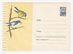 ХМК СССР/1964 г. 3125-1  16.04.1964 Большая синица и мухоловка-пеструшка