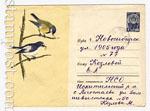USSR Art Covers 1964 3125 СССР 1964 16.04 Больная синица и мухоловка-пеструшка