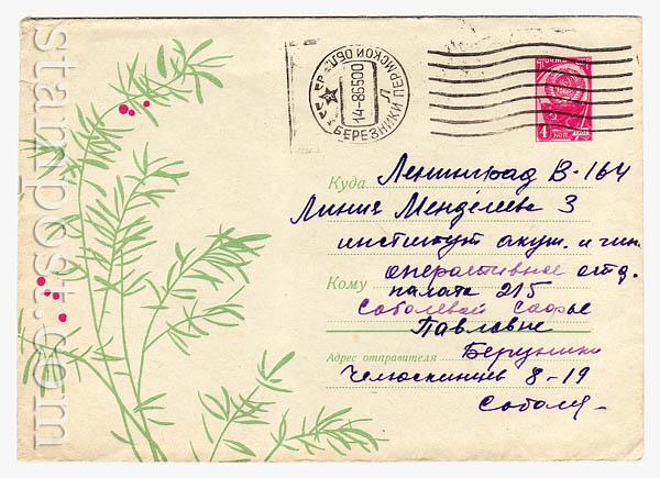 4262 P ХМК СССР  1966 27.05 Декоративное растение