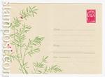 ХМК СССР/1966 г. 4262  1966 27.05 Декоративное растение