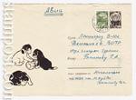 ХМК СССР/1966 г. 4322  1966 07.07 Щенки с куклой-неваляшкой