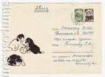 USSR Art Covers/1966 4322  1966 07.07 Щенки с куклой-неваляшкой
