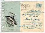 ХМК СССР 1967 г. 4817  1967 15.08 Дельфин