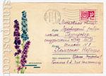 ХМК СССР 1967 г. 5337  1967 Дельфиниум. Н.Кирпичева