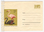 ХМК СССР 1968 г. 5785 СССР 1968 05.08 Фламинго и черный лебедь. Продано