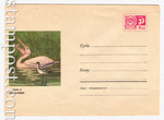 USSR Art Covers 1970 6810 USSR 1970 14.01 Pelican and Pied Avocet