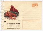 USSR Art Covers 1970 7368 СССР 1970 17.12 Моржи у берега
