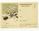 """Почтовые карточки 1941 - 1945 гг. 11  1942 Их,"""" жизненное пространство"""""""