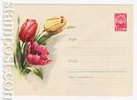USSR Art Covers 1961 1520  1961 03.04 Тюльпаны